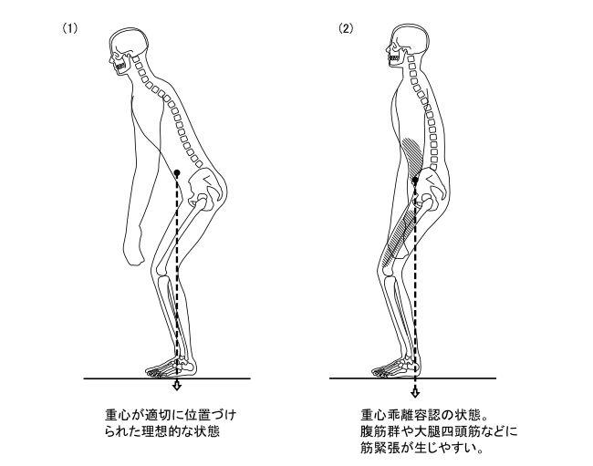 図1ー6 中腰姿勢における重心乖離容認