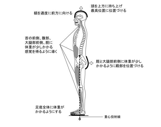 図6−1 立位における立骨重心制御