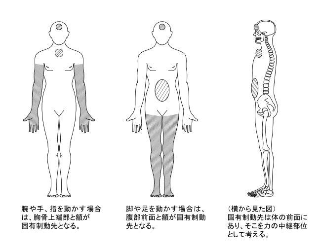 図7ー1 腕と脚の動作の固有制動先