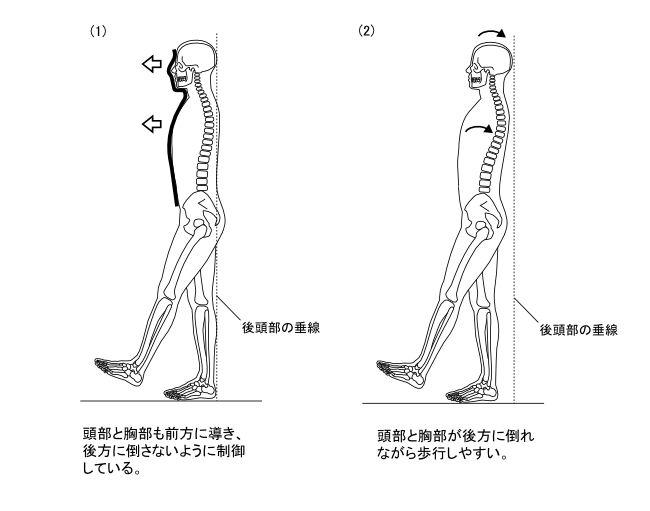 図7−6 歩行動作