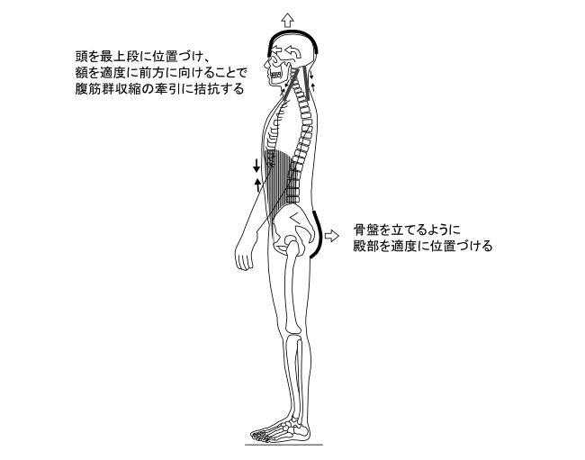 図8ー2 発声時の体の制御の仕方